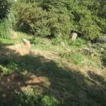 Հրեական գերեզմանոց  Եղեգիս գյուղում  /պետ. ցուցիչ` 9.21.5./