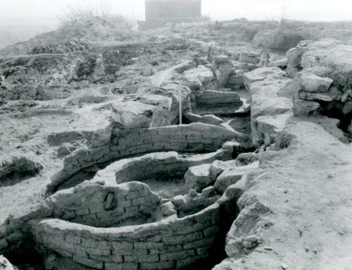 Մեծամորի Կուր-արաքսյան (վաղբրոնզեդարյան) բնակատեղի