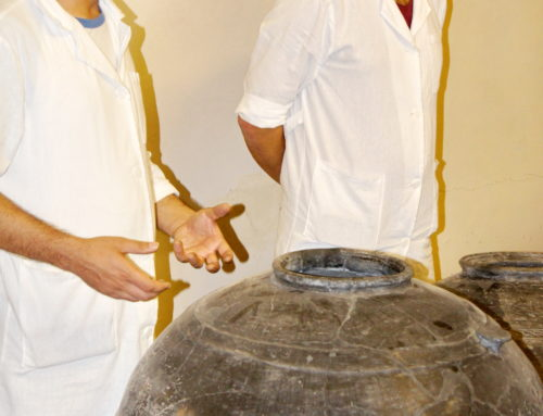 "PITCHERS OF ""METSAMOR"" TO BE PRESENTED IN THE MUSEUM-RESERVE"